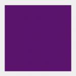 536 Violetto
