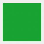 601 Verde Chiaro