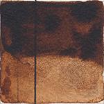 495 Marrone Van Dyck
